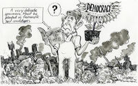 Democracy ' A very delicate specimen. Must be planted in favourable conditions