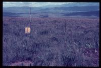 1/80 [Summit of Arthur's Seat ' 100m south west of Beacon]. Looking south south west